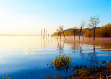 Schöner See mit Bergen im Hintergrund bei Sonnenaufgang Bäume im Wasser und im Morgennebel Lizenzfreie Stockfotos