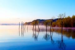 Schöner See mit Bergen im Hintergrund bei Sonnenaufgang Bäume im Wasser und im Morgennebel Stockbilder