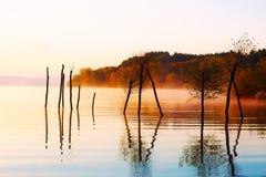 Schöner See mit Bergen im Hintergrund bei Sonnenaufgang Bäume im Wasser und im Morgennebel Stockbild