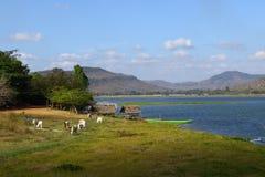 Schöner See in Nord-Thailand Stockbilder