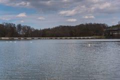 Schöner See in Sibiu Stockfotos