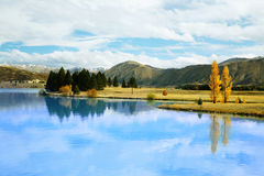 Schöner See Tekapo stockbild