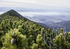 Schöner Seeblick in den Tiefländern zur alpinen Umwelt Lizenzfreies Stockfoto