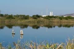 Schöner Seeblick in einer Erhaltung der Naturs-Mitte stockfoto