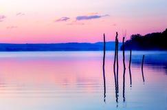 Schöner Seeblick in mornig Nebel mit Bäumen und mystischen Bergen auf dem Hintergrund in den zarten purpurrot-blauen Tönen, mit Stockfoto
