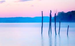 Schöner Seeblick in mornig Nebel mit Bäumen und mystischen Bergen auf dem Hintergrund in den zarten purpurrot-blauen Tönen, mit Lizenzfreies Stockbild