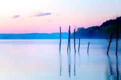 Schöner Seeblick in mornig Nebel mit Bäumen und mystischen Bergen auf dem Hintergrund in den zarten purpurrot-blauen Tönen, mit Stockbild