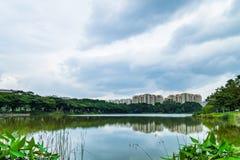 Schöner Seeblick von Punggol-Park in Singapur mit blauem Himmel a Lizenzfreies Stockbild