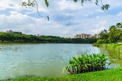Schöner Seeblick von Punggol-Park in Singapur mit blauem Himmel a Lizenzfreie Stockfotografie