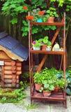 Schöner Sommer entwarf Garten mit Hundehütte und Holzregal Stockbild