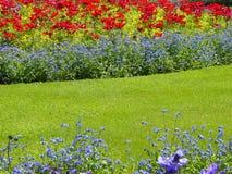 Schöner Sommergarten Lizenzfreies Stockbild