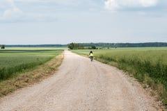 Schöner Sommertag in der lettischen Landschaft lizenzfreie stockfotografie