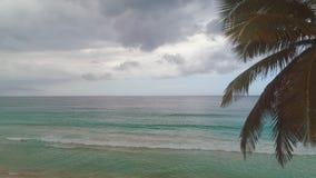 Schöner Sonnenaufgang über dem tropischen Strand und exotischen der Palme, Meer Punta Cana stock footage