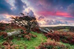 Schöner Sonnenaufgang in Cornwall Stockfoto