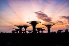 Schöner Sonnenaufgang an den Gärten durch die Bucht in Singapur Stockfotos