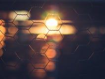 Schöner Sonnenaufgang durch Zaun Lizenzfreie Stockfotos