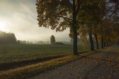 Schöner Sonnenaufgang am Herbstmorgen in Schweden Skandinavien lizenzfreie stockfotografie