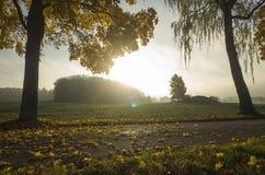 Schöner Sonnenaufgang am Herbstmorgen in Schweden Skandinavien lizenzfreie stockbilder