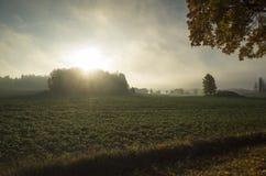 Schöner Sonnenaufgang am Herbstmorgen in Schweden Skandinavien lizenzfreies stockfoto