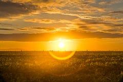 Schöner Sonnenaufgang mit Halo in der Landschaft Lizenzfreies Stockbild