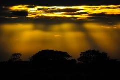 Schöner Sonnenaufgang in Thailand stockfotos