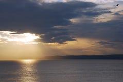 Schöner Sonnenaufgang und Vögel Stockfoto