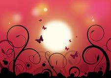 Schöner Sonnenschein Stockbild