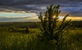 Schöner Sonnenuntergang über Feldern und Wäldern Lizenzfreie Stockbilder