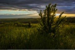Schöner Sonnenuntergang über Feldern und Wäldern Stockbild