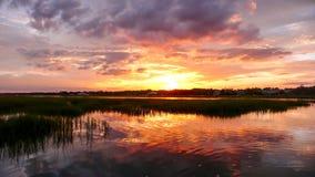 Schöner Sonnenuntergang über Sumpfgras und Küstenozeanwasser an der Flut mit Wald im Hintergrund lizenzfreie stockbilder