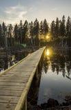 Schöner Sonnenuntergang lizenzfreie stockbilder