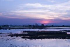 Schöner Sonnenuntergang auf dem See stockfoto