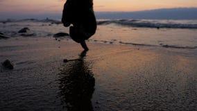 Schöner Sonnenuntergang auf der Seeküste stock footage