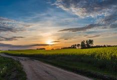 Schöner Sonnenuntergang auf einer Landstraße mit blauem Himmel und Wolken Stockbilder