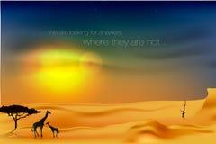 Schöner Sonnenuntergang in der Wüste Lizenzfreie Stockbilder