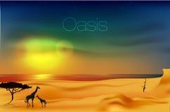 Schöner Sonnenuntergang in der Wüste Stockfotografie