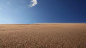 Schöner Sonnenuntergang in der Wüste Sandsturm auf der Düne stock video footage
