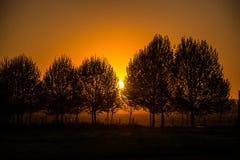 Schöner Sonnenuntergang an einem Landschaftsbauernhof. Argentinien, Südamerika lizenzfreie stockfotos