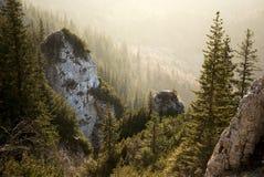 Schöner Sonnenuntergang, goldene Stunde in den Bergen, über dem Wald lizenzfreies stockbild