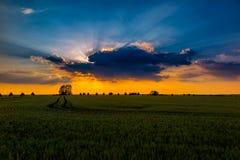 Schöner Sonnenuntergang mit hintergrundbeleuchtetem Stockfotografie