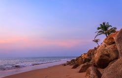 Schöner Sonnenuntergang mit Kokosnussbäumen und -felsen Lizenzfreie Stockbilder