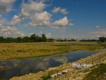 Schöner sonniger Sommertag durch den Fluss stockbilder