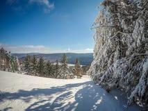 Schöner sonniger Tag auf Steigungen des Schneeschuhberges in den cass West Lizenzfreie Stockbilder