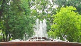 Schöner Steinbrunnen mit hohen Jets in einem Stadtpark stock video