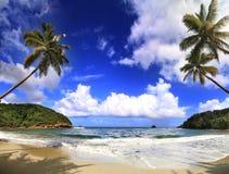 Schöner Strand in Dominica lizenzfreies stockfoto
