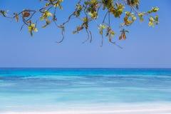 Schöner Strand mit Blattrahmen und Raum für Ihr Design Stockfotos