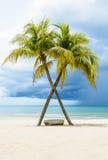 Schöner Strand mit Palmen Stockfotografie