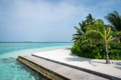 Schöner Strand mit Palmen, weißem Sand und blauem Himmel maldives lizenzfreie stockbilder