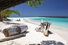 Schöner Strand mit ursprünglichem Türkiswasser in der Konflikt-Insel, Papua-Neu-Guinea Stockfotografie
