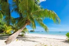 Schöner Strand in Praslin-Insel, Seychellen lizenzfreies stockfoto